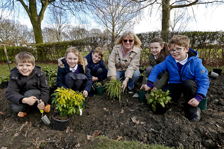 Bulb planting at Outwood Park